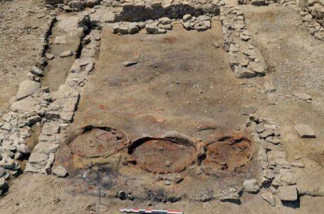 Археологи нашли древний винный бар