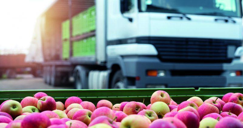 Експорт власного урожаю – ТОП-3 правила від експерта