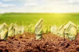 Обнародован финальный вариант законопроекта по рынку земли