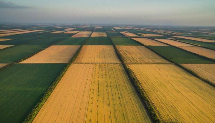 Верховна рада прийняла закон про ринок землі