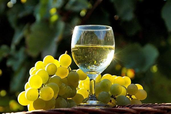 Вчені заявили про користь білого вина для легенів