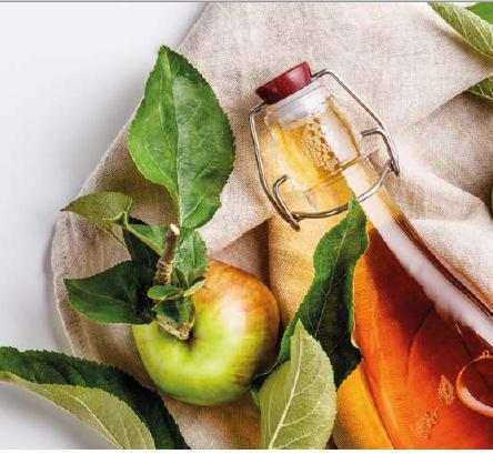 Исследование производства безопасного яблочного сoка для получения кальвадоса