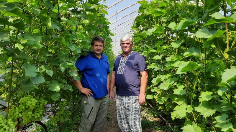 Роман Даниляк, «Галицьке гроно»: «Ми не просто вирощуємо виноград і виготовляємо вина, ми популяризуємо вино та його споживання!»