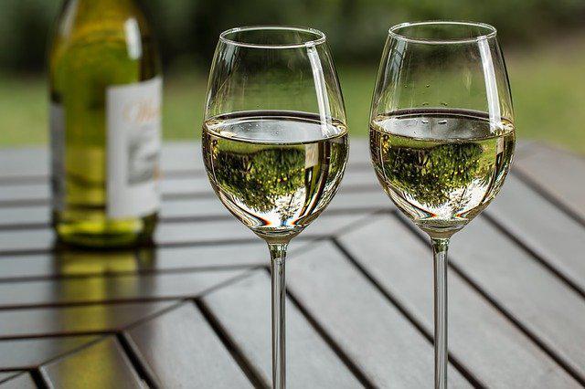 Українське виноробство: заручник політичного чи економічного підходу? Що потрібно для розвитку українського виноробства