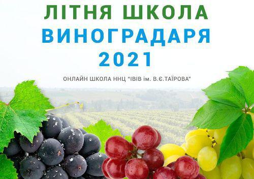 На базі Навчально-наукового центру «ІВіВ ім. В.Є. Таїрова» пройде Літня Школа Виноградаря 2021